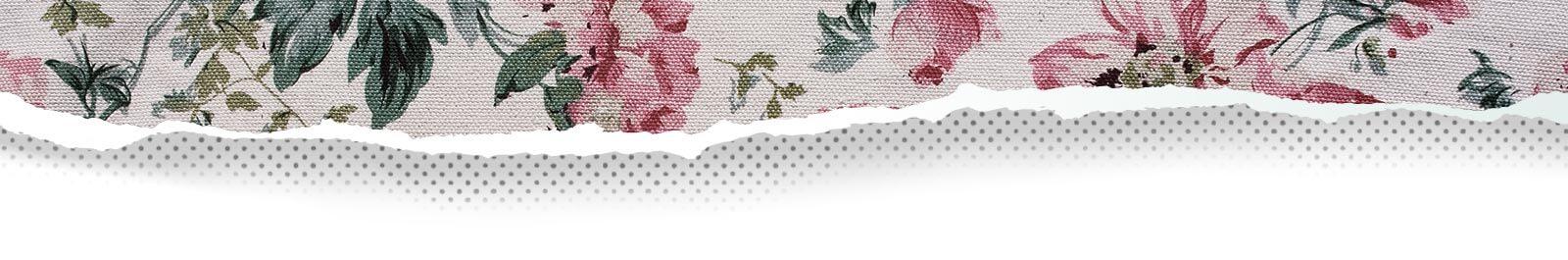 Top's Wallpaper