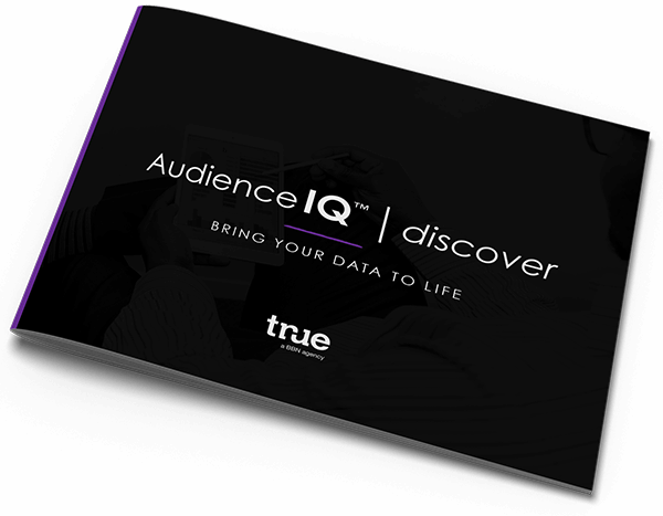 AudienceIQ™ | Discover – Bring your data to life – True